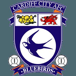 Cardiff City News, Cardiff City Transfers