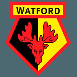 Watford FC News, Watford FC Transfers