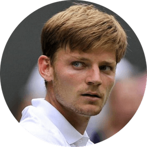 logo David Goffin
