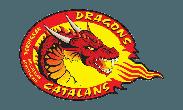 logo Dragons Catalans