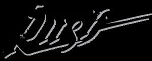 logo Edmonton Rush
