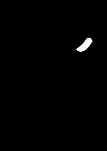logo Fight