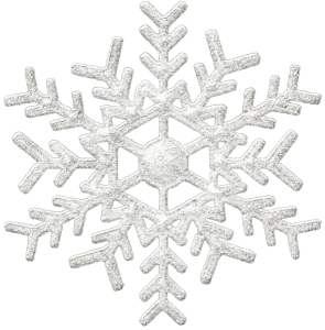 logo Ski - glace